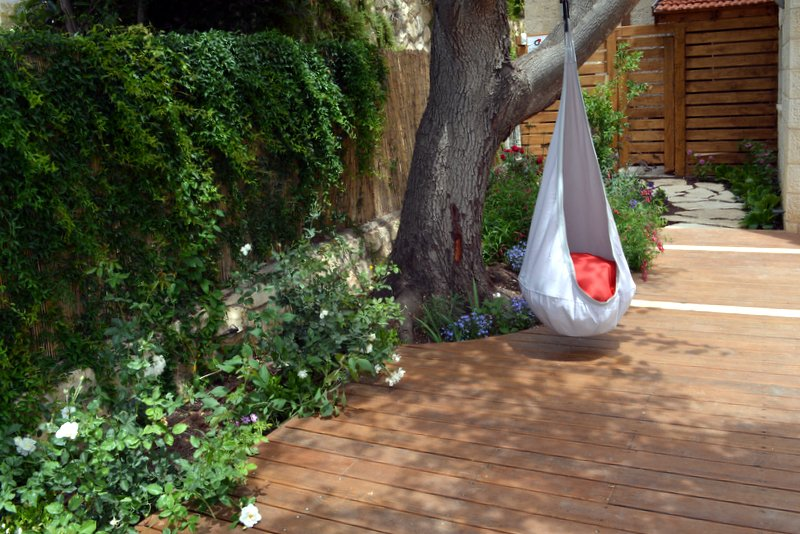 עץ כליל ותיק נשמר במהלך הקמת הגן