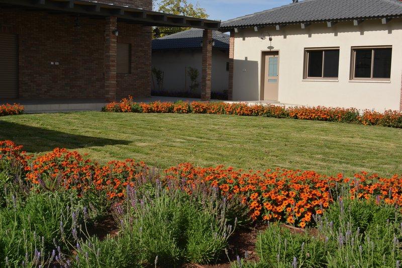 מדשאה עגולה מעוטרת בפרחי עונה