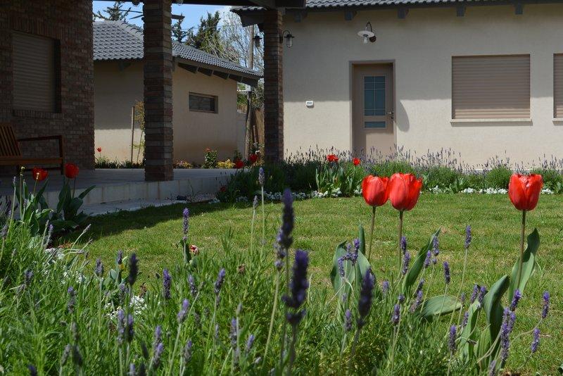 גן בניחוח אירופאי (5)