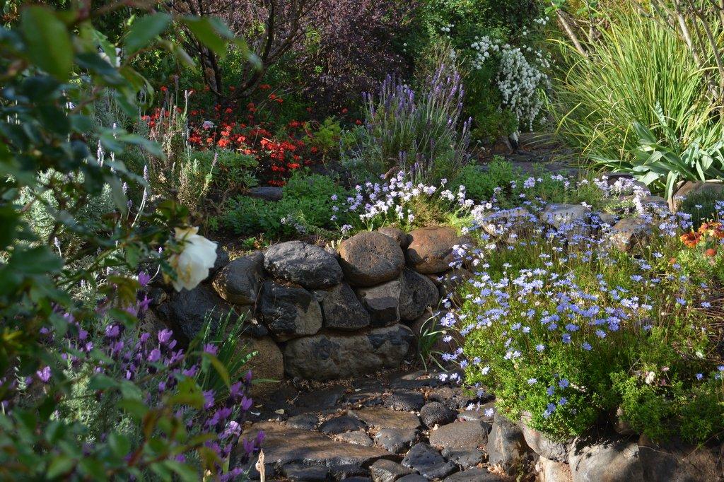 טרסות מאבן בזלת , פריחה באביב