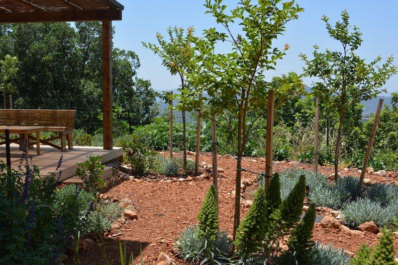 הגן של דורון שפר (2)