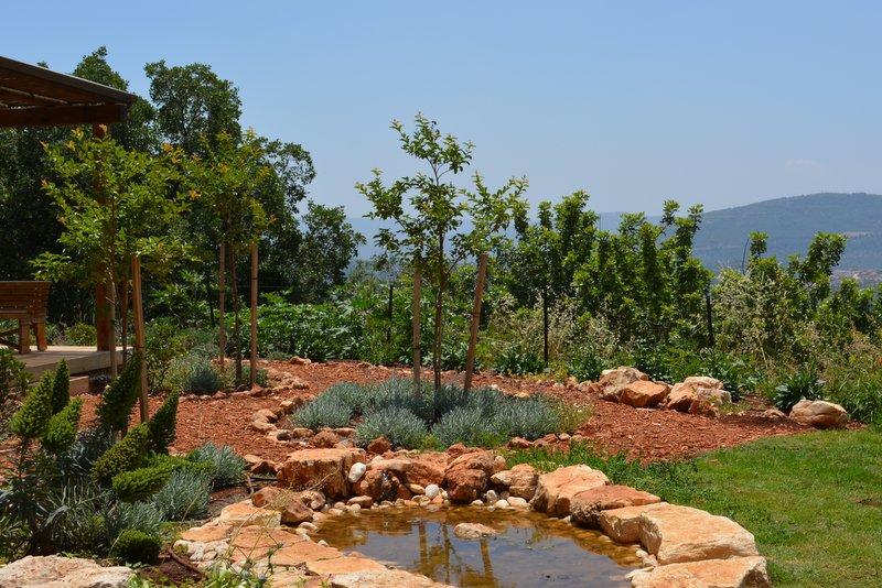 הגן של דורון שפר (6)