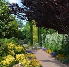 שביל כניסה עטוף צמחיה פורחת