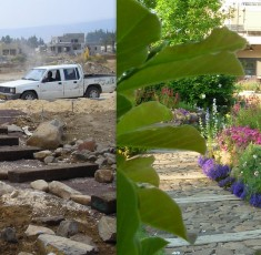 לפני ואחרי (11)