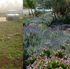 לפני ואחרי (24)