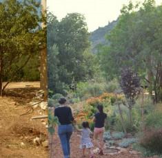 לפני ואחרי (28)