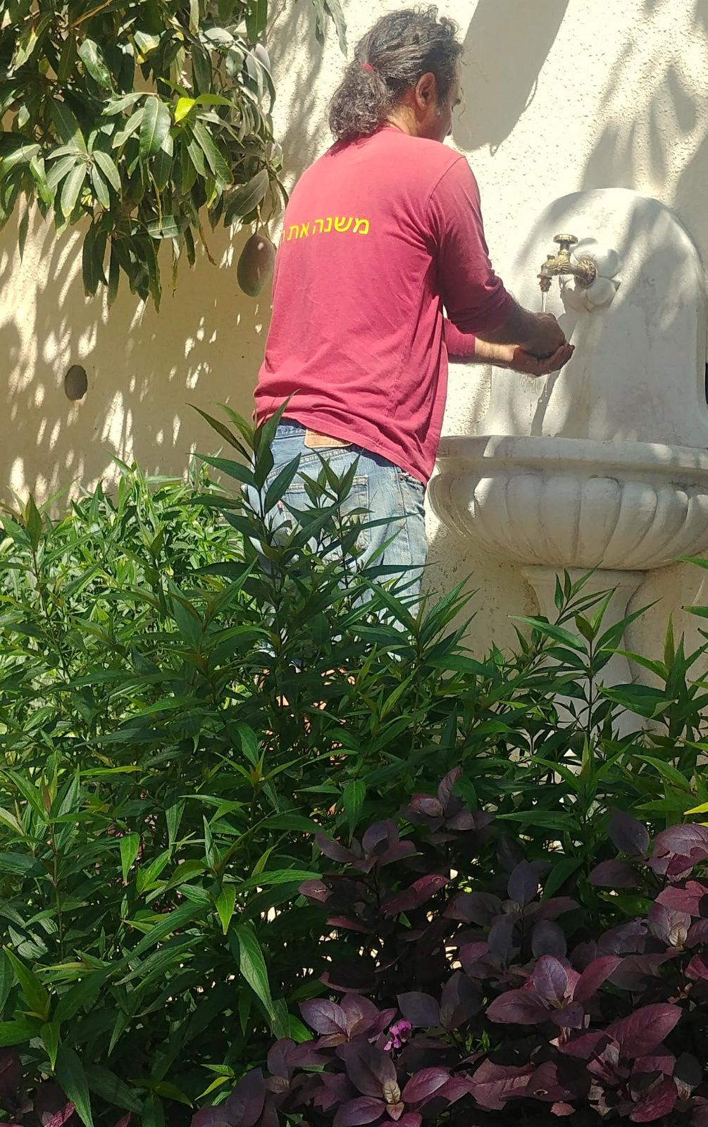 small garden in Haifa (5)