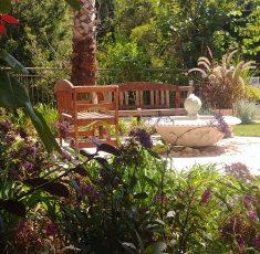 small garden in Haifa (6)