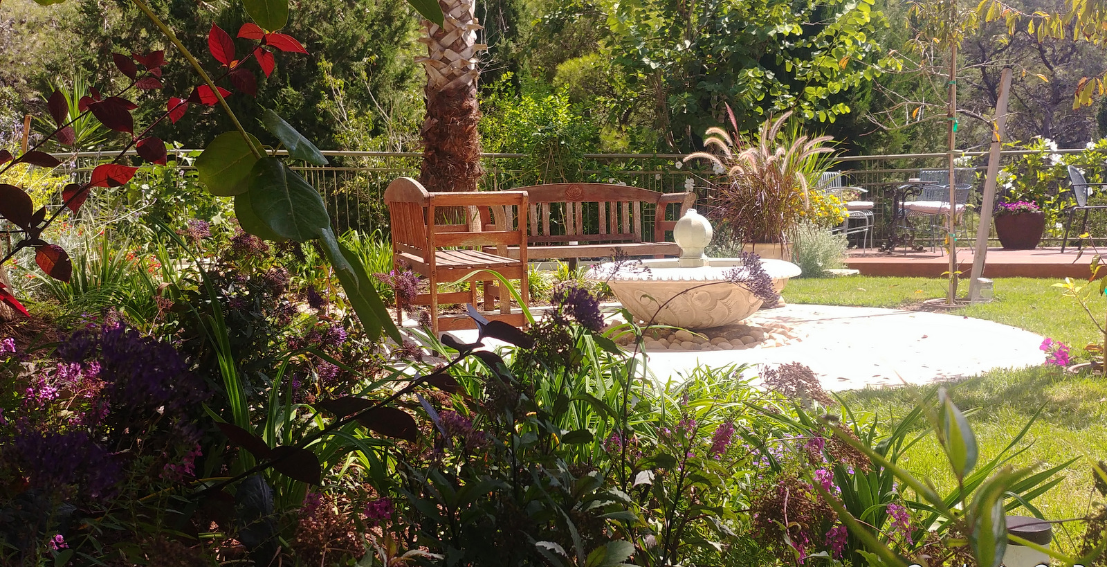 small garden in Haifa (6)